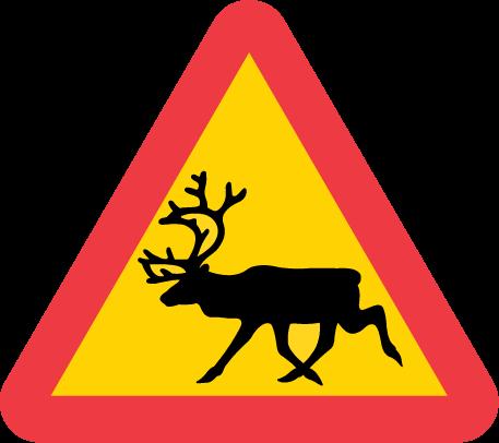 A19-5-varning-for-ren